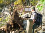 Park trail crew member surveys damage to East Face Trail, which included downed trees and rocks.
