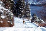 A visitor enjoys cross-country skiing on the freshly fallen snow.