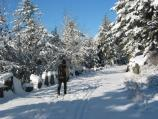 Winter - Cross-Country Skiing