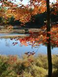 Fall colors and Acadia's many lakes and ponds offer spectacular fall scenery.