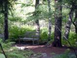 A peaceful scene at the Wild Gardens