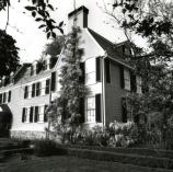 Photograph of the side of the Old House with wisteria, 1960s. The wisteria continues to bloom every spring.