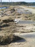 Beach Road looking west, after Hurricane Sandy, VA District, 337kb.
