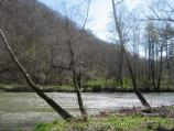 Early spring on the Bluestone River, near Lilly