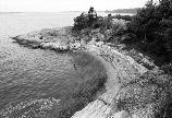 Cobble-and-boulder beach on Langlee Island. (Olmsted Center for Landscape Preservation Boston Harbor Islands Cultural Landscape Report.)