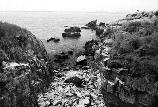 A rocky beach on Outer Brewster Island. (Olmsted Center for Landscape Preservation Boston Harbor Islands Cultural Landscape Report.)