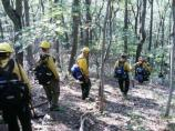 NEP #1 on the Neighbor Mountain Fire in Shenandoah National Park in VA. (2012)