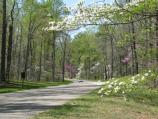 As one of the few intact examples of classic American parkway design, the Colonial Parkway is one of only 32 roads designated an All-American Road by the U.S. Department of Transportation.
