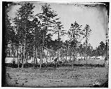 East end of the Union winter encampment at Brandy Station, Virginia.