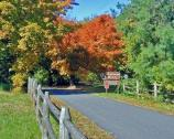 Chatham Entrance Road in Fall