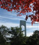 Fall foliage at Fort Wadsworth, with the Verrazano Narrows Bridge in the background.