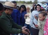 Students Discovering Horseshoe Crabs, Dead Horse Bay, Floyd Bennett Field