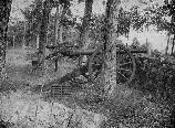 British-made Whitworth cannon used by Confederate artillerymen, mark a battery position in Schultz Woods.