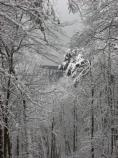 glimpse of New River Gorge Bridge therough snow covered trees