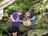 students using a dip net in a stream