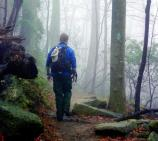 A foggy day can provide a scenic splendor for hikers.