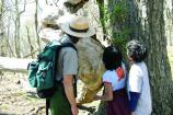 Visitors can learn about Shenandoah's ever-changing forest by attending the Story of the Forest Ranger Program.