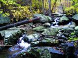 Whiteoak Canyon Trail - one of Shenandoah's most popular.