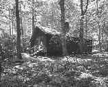 VA-119-67	CAMP HOOVER. PRIME MINISTERS CABIN. LOOKING WEST.  More about HAER Photo Documentation...