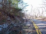 An ice storm in November, 2006 caused widespread damage in Shenandoah.