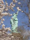 A view of Liberty aglow in springtime flowers
