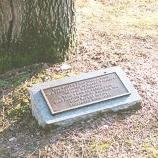 Coffee Bean Tree Memorial Marker