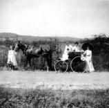 Woman and Horse Carriage