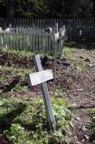 Wooden Crosses Mark Graves at Kennecott Cemetery, Kennecott Mines National Historic Landmark