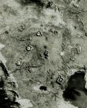 Aerial showing circles and landscape scarring