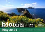 National Parks BioBlitz - Channel Islands National Park