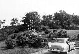A black-and-white photo shows visitors, many in dresses, following a path through shrubs. A 1950s car is in the parking lot.