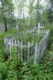 White paint peels off wooden crosses and a picket fence, forming a small rectangle surrouned by lush vegetation.