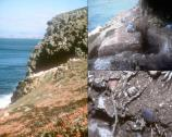San Miguel's 600 archeological sites reveal occupation by American Indians back to 10,700 years before the present. The 1995 discovery of sea grass basketry and cordage fragments are the oldest to date on the Pacific coast.