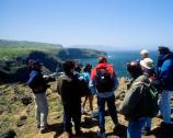 In addition to touring the historic adobe buildings, visitors to Scorpion Ranch also may hike out to Cavern Point for a spectacular view of the rugged northwest coast of the island.