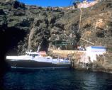 Access to East Anacapa Island is at the Landing Cove. Visitors climb a steel rung ladder to the dock and 153 stairs to the top of the island.