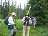 Researchers collect data during the 2007 BioBlitz at Sphagnum Bog in Crater Lake National Park.