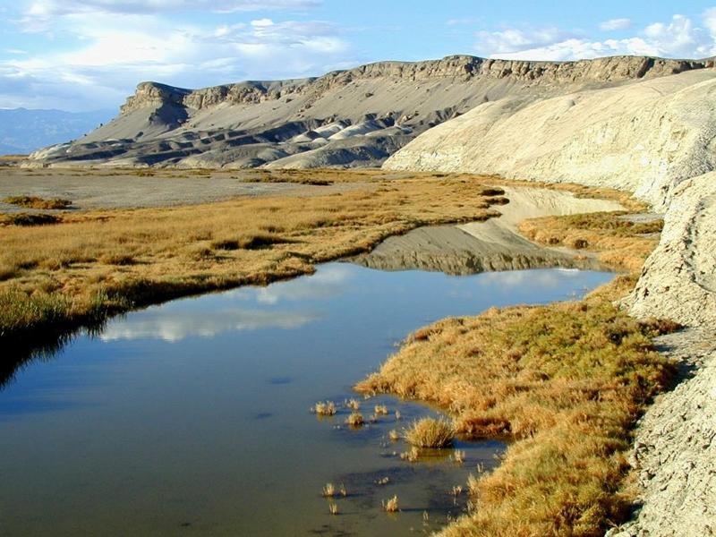 The spring-fed pools of upper Salt Creek are the year-round habitat of pupfish.