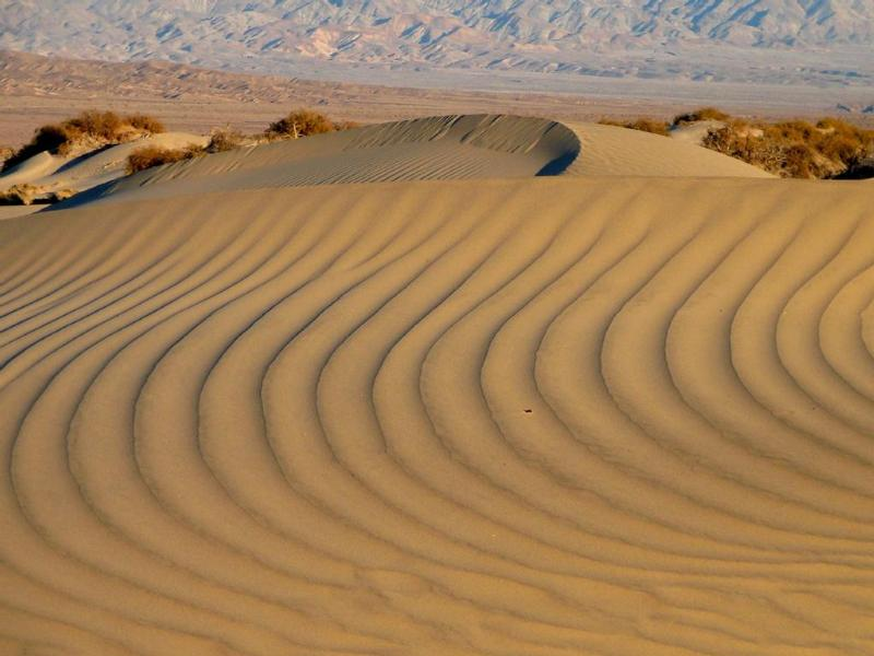 Patterns on the dunes are made fresh with every wind.