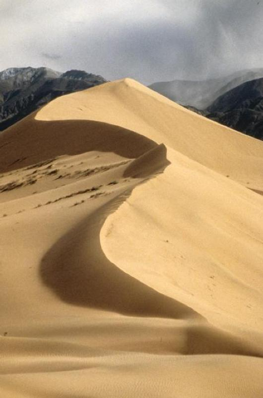 Hidden behind the Saddle Peak Hills in southern Death Valley, Ibex Dunes are a scenic gem in the wilderness.