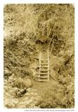 """Type of makeshift arrangements that were common along Bootjack and other foot trails in the Muir Woods region."" Wooden ladder crossing ravine, unknown date."
