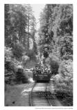 Group of visitors on the Mount Tamalpais Railroad, gravity train, date unknown.