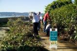 National Day of Service: Alcatraz Agave Trail