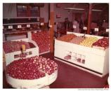 """Produce market sales selection, Commissary Sales Store, 25 Sept. 1957"" interior."