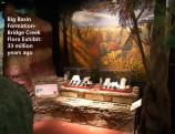 Image of the Bridge Creek Formation mural and exhibit inside the Thomas Condon Paleontology Center.