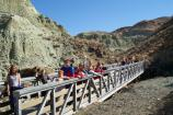 Kids on one of the bridges at Blue Basin.