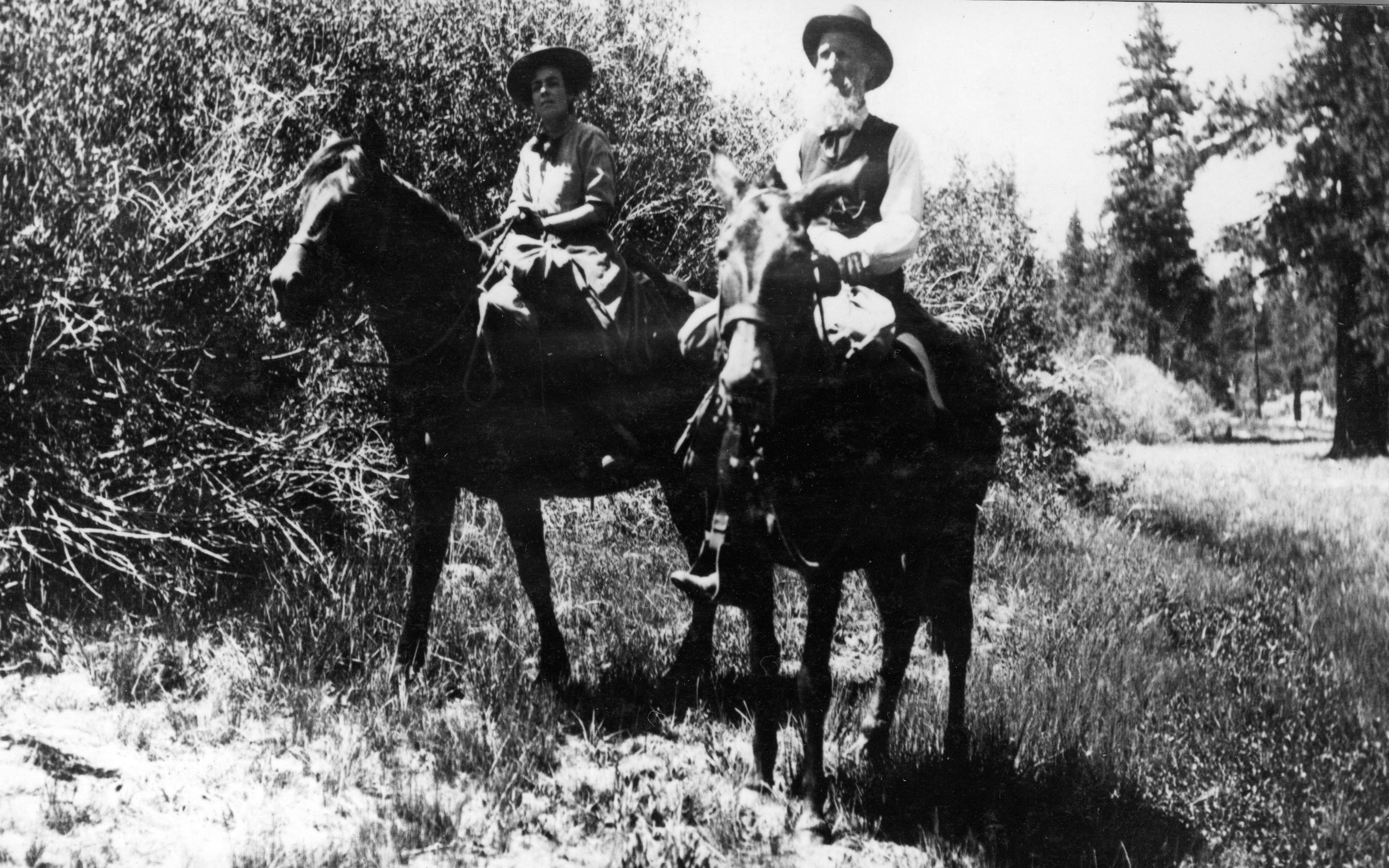 John muir and teddy roosevelt images amp pictures becuo