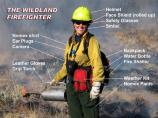 This images shows the standard gear of a wildland firefighter working on a prescribed burn. Not shown is a hand tool, such as a fire shovel or