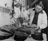 Jack Toyo, former owner of a cleaning and dying works in Hollywood, California, now works in the pressing department in the garment factory. He is shown putting the finishing touches on caps for the firemen. These caps were all made by evacuee workers in the garment factory at this War Relocation Authority Center for evacuees of Japanese ancestry.
