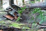 Falling trees damaged or destroyed picnic tables.