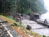 Tahoma Creek spills through the remnants of Sunshine Point Campground into the Nisqually River.